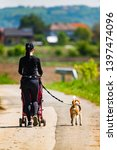 Stock photo mother walking with stroller and dog outdoors in nature on a rural road sunny day in countryside 1397474096
