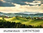 South Styria Vineyards...