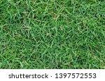 green grass texture for... | Shutterstock . vector #1397572553