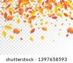 oak  maple  wild ash rowan... | Shutterstock .eps vector #1397658593