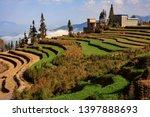honghe yuanyang  samaba rice... | Shutterstock . vector #1397888693