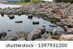 toyohashi mikawa seaside green ... | Shutterstock . vector #1397931200