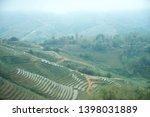 field of sapa in vietnam | Shutterstock . vector #1398031889