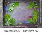 spring flowers hyacinths on a... | Shutterstock . vector #139809676
