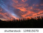 Spectacular Sunset During The...