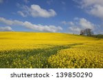 blue and gold nature background ... | Shutterstock . vector #139850290