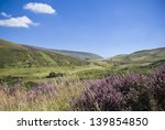 Постер, плакат: Heather lush green hills