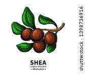 shea butter vector drawing.... | Shutterstock .eps vector #1398736916