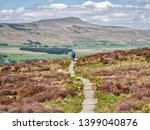 A Lone Walker On A Stone Path ...