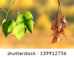 concept of life and death   two ... | Shutterstock . vector #139912756