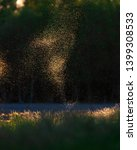 flies and mosquitos above field ...   Shutterstock . vector #1399308533