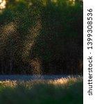 flies and mosquitos above field ...   Shutterstock . vector #1399308536