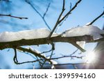 last of winter snow frost on a... | Shutterstock . vector #1399594160