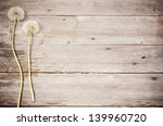 Dandelion  On A Aged Wooden...