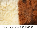 fleece sheep background   Shutterstock . vector #139964338