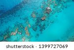 Coral Reefs Off The Coast Of...
