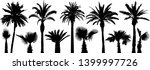 palm tropical trees. silhouette ... | Shutterstock .eps vector #1399997726