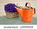 an orange watering can next to... | Shutterstock . vector #139999939