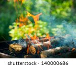 bbq fire outdoor. bonfire... | Shutterstock . vector #140000686