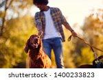 Stock photo walk outdoors professional dog walker happy dog enjoying in 1400233823