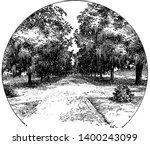 avenue of live oaks at audubon...   Shutterstock .eps vector #1400243099