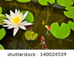 Pond With White Waterlily And...