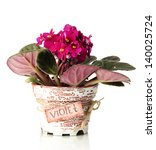 Bright Saintpaulia In Flowerpo...