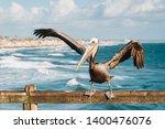 pelican on the pier in... | Shutterstock . vector #1400476076