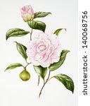 hand drawing | Shutterstock . vector #140068756