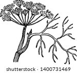 a picture  that's showing dill. ... | Shutterstock .eps vector #1400731469