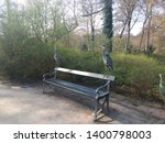 Herons Standing On Bench In Park