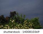 overcast sky before rain is... | Shutterstock . vector #1400810369