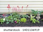 Coral Bells Flower Bed With...