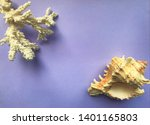 White coral branch in the upper ...