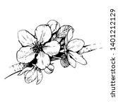 sketch hand drawn apple blossom.... | Shutterstock .eps vector #1401212129