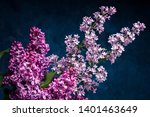 bouquet of lilac on a dark... | Shutterstock . vector #1401463649