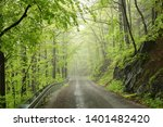 trail through the spring... | Shutterstock . vector #1401482420