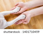 dog and owner handshaking or... | Shutterstock . vector #1401710459