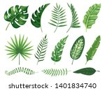 exotic tropical leaves.... | Shutterstock . vector #1401834740