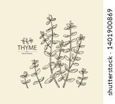 background with of thyme ... | Shutterstock .eps vector #1401900869