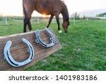 Horse Without Horseshoes ...