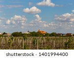 vineyard on the outskirts of... | Shutterstock . vector #1401994400