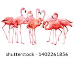 A Flock Of Pink Flamingos On A...