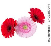 three   pink and red and red... | Shutterstock . vector #1402357049