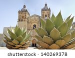 Mexican Church And Maguey  Mai...