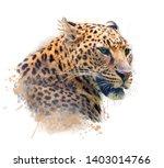 Watercolor Portrait Of Leopard...