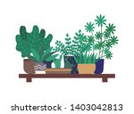 wooden shelf with plants ... | Shutterstock .eps vector #1403042813
