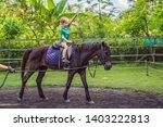 boy horseback riding ... | Shutterstock . vector #1403222813