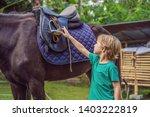 boy horseback riding ... | Shutterstock . vector #1403222819