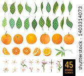 watercolor elements of oranges  ... | Shutterstock .eps vector #1403314073